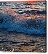 Washing Ashore Acrylic Print