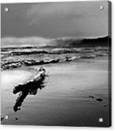 Washington Coast Acrylic Print