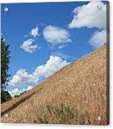 Washington Countryside Acrylic Print