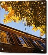 Washington D C Facades - Reflecting On Autumn In Georgetown  Acrylic Print
