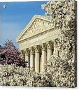 Washington Dc Cherry Blossom Supreme Court Acrylic Print