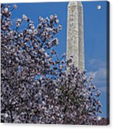 Washington Monument Acrylic Print by Susan Candelario