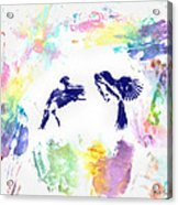 Water Color Bird Fight Acrylic Print
