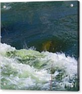 Water Detail 01 Acrylic Print