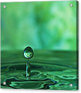 Water Drop Green Acrylic Print