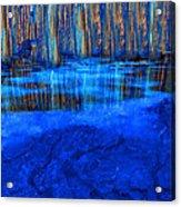 Water Hole Acrylic Print