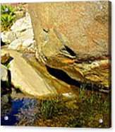 Water In Oasis On Borrego Palm Canyon Trail In Anza-borrego Desert Sp Campground-ca  Acrylic Print