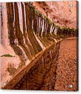 Water Is Life - Coyote Gulch - Utah Acrylic Print