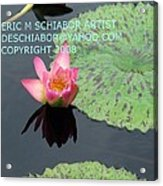 Water Lilies Orange Pink Acrylic Print