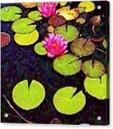 Water Lilies With Pink Flowers - Vertical Acrylic Print