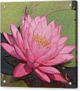 Water Lily And Guest Acrylic Print