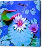Water Lily I Acrylic Print by Ann Johndro-Collins
