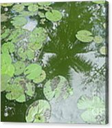 Water Lily Leaves And Palm Trees Acrylic Print