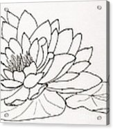 Water Lily Line Drawing Acrylic Print
