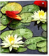 Water Lily Pond In Autumn Acrylic Print