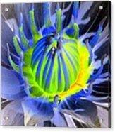 Water Lily - The Awakening - Photopower 03 Acrylic Print