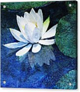 Water Lily Two Acrylic Print by Ann Powell