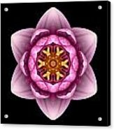 Water Lily X Flower Mandala Acrylic Print