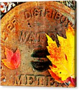 Water Meter Cover With Autumn Leaves Abstract Acrylic Print