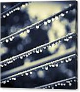 Water On Clothes Line Acrylic Print