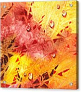 Water On Color Design Nine Acrylic Print