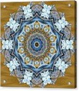 Water Patterns Kaleidoscope Acrylic Print