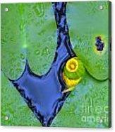 Water Plants 3 Acrylic Print