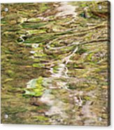 Water Reflection Acrylic Print