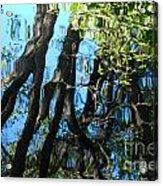 Water Reflections 3 Acrylic Print