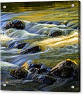 Beautiful Water Reflections On The Flowing Thornapple River Acrylic Print