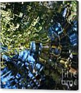 Water Reflections 5 Acrylic Print