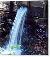 Water Running Fast Acrylic Print by Regina McLeroy