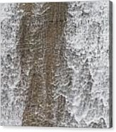 Water Vail Acrylic Print
