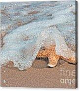 Water Veil Acrylic Print