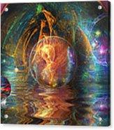 Water Worlds Acrylic Print