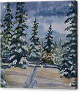 Original Watercolor - Colorado Winter Pines Acrylic Print