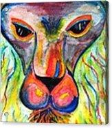 Watercolor Lion Acrylic Print