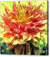 Watercolor Of Dreamy Dahlia Acrylic Print