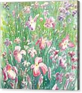 Watercolour Of Pink Iris's In A Green Field Acrylic Print