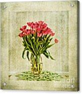 Watercolour Tulips Acrylic Print by John Edwards
