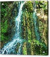 Waterfall 3 Acrylic Print