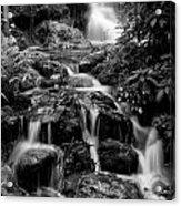 Waterfall At Rainbow Springs Acrylic Print
