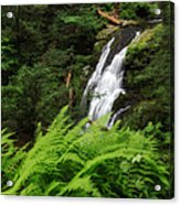 Waterfall Fern Square Acrylic Print