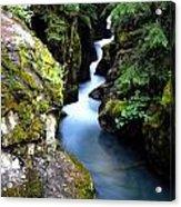 Waterfall, Glacier National Park Acrylic Print