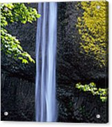 Waterfall In A Forest, Latourell Falls Acrylic Print