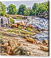 Waterfall In Contrast Acrylic Print