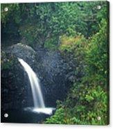 Waterfall In Rainforest Hana Highway Maui Hawaii Acrylic Print