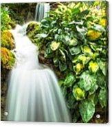 Waterfall In The Hosta Acrylic Print