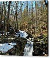 Waterfall Rush Acrylic Print