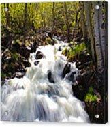 Waterfall Through The Aspens Acrylic Print